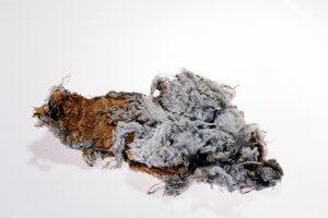 Can Asbestos Kill You?