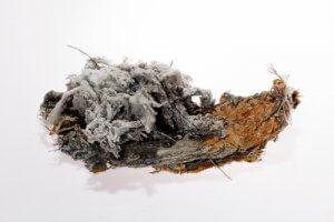 Why Asbestos is Bad